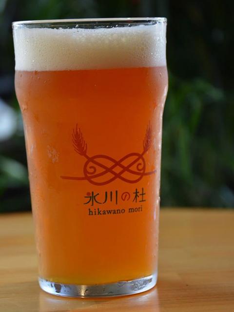 氷川の杜 オリジナルグラス